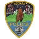 hoonan-police